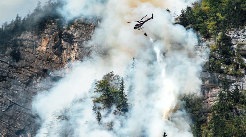 Incendio forestal Cortafuegos Verdes