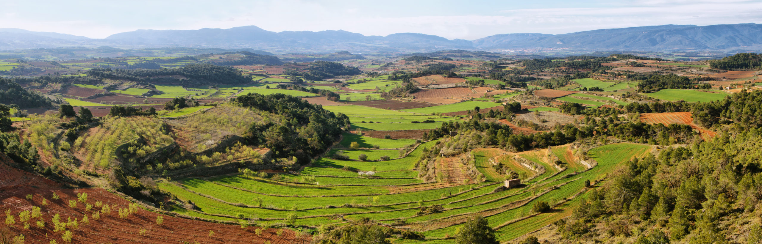 Agricultura abancalada