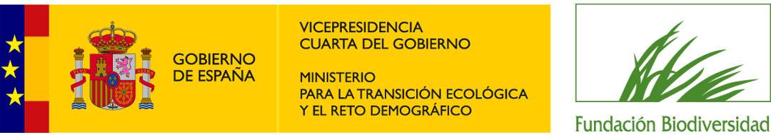 Ministerio de transicion