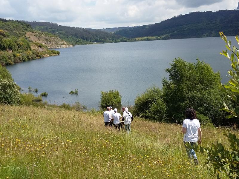 Voluntarios de Gas Natural Fenosa contribuyen a la conservación del entorno del lago de Meirama en Cerceda (A Coruña)