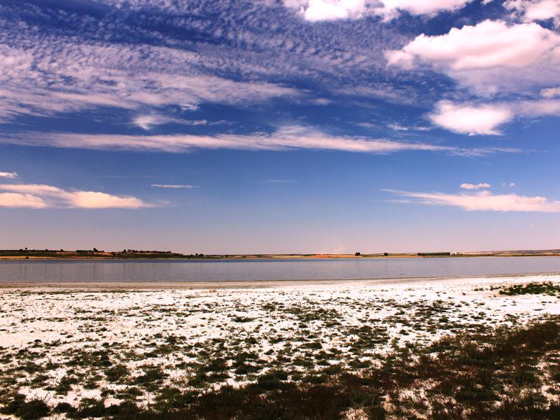 Un proyecto europeo para la conservación de 27 humedales manchegos