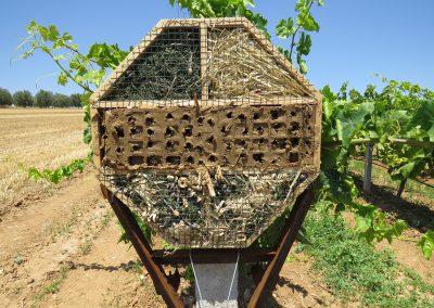 Mejora de la biodiversidad en la viticultura ecológica