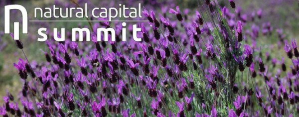 El Natural Capital Summit reúne a empresas pioneras en la buena gestión de la biodiversidad