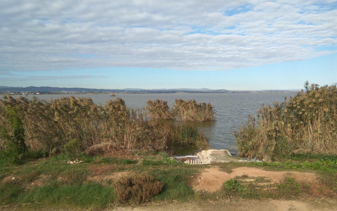 L'Albufera participa en una iniciativa internacional innovadora para medir la calidad de las aguas