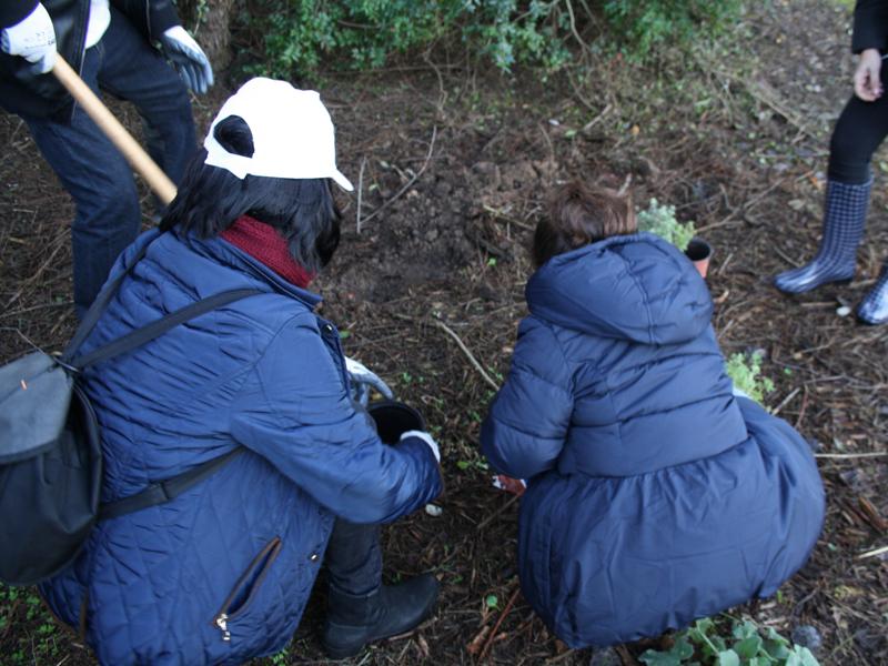 Voluntarios participan en la mejora ambiental de la Laguna Fuente del Rey en Dos Hermanas