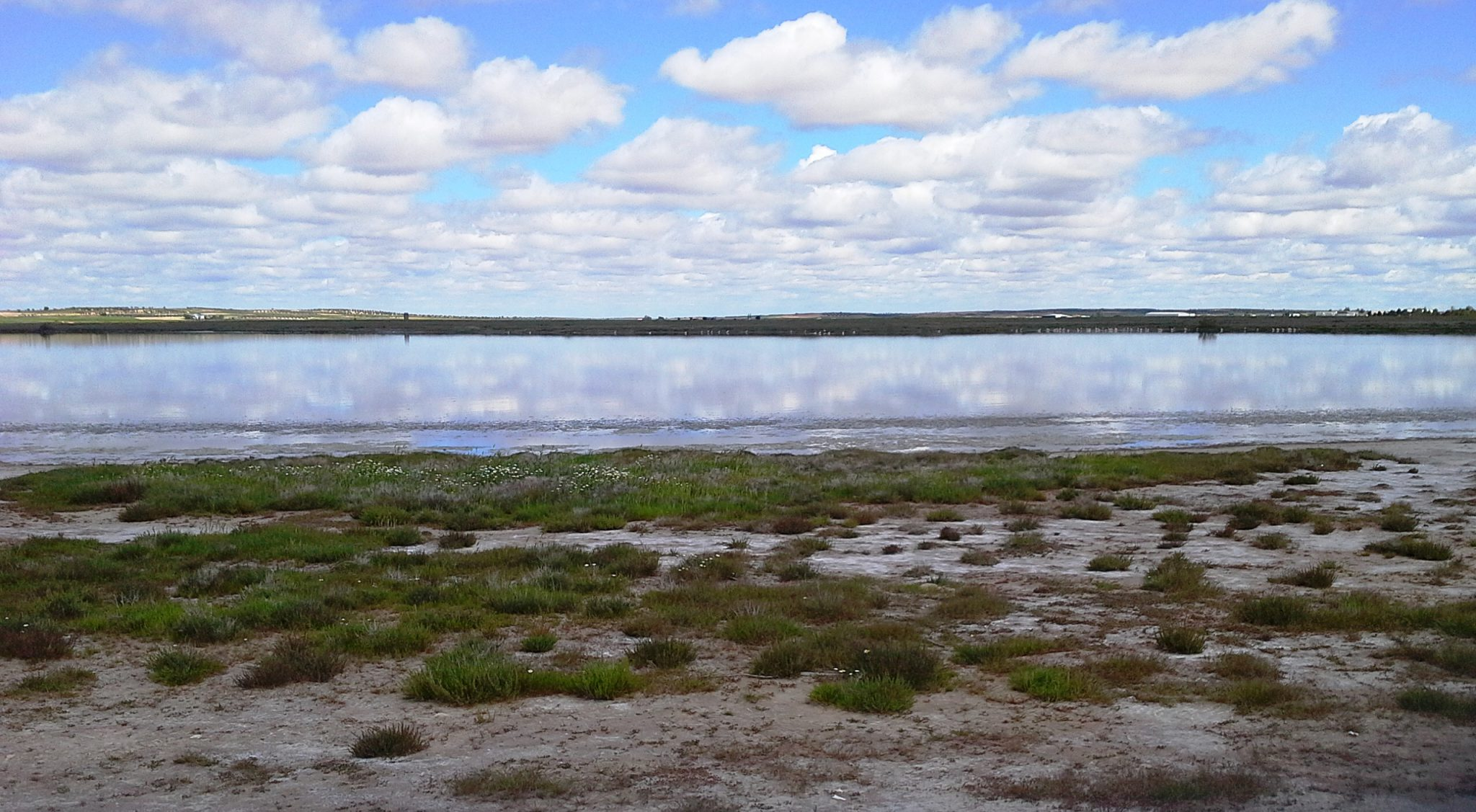 La Fundación Global Nature celebra el Día Mundial de los Humedales en Castilla-La Mancha