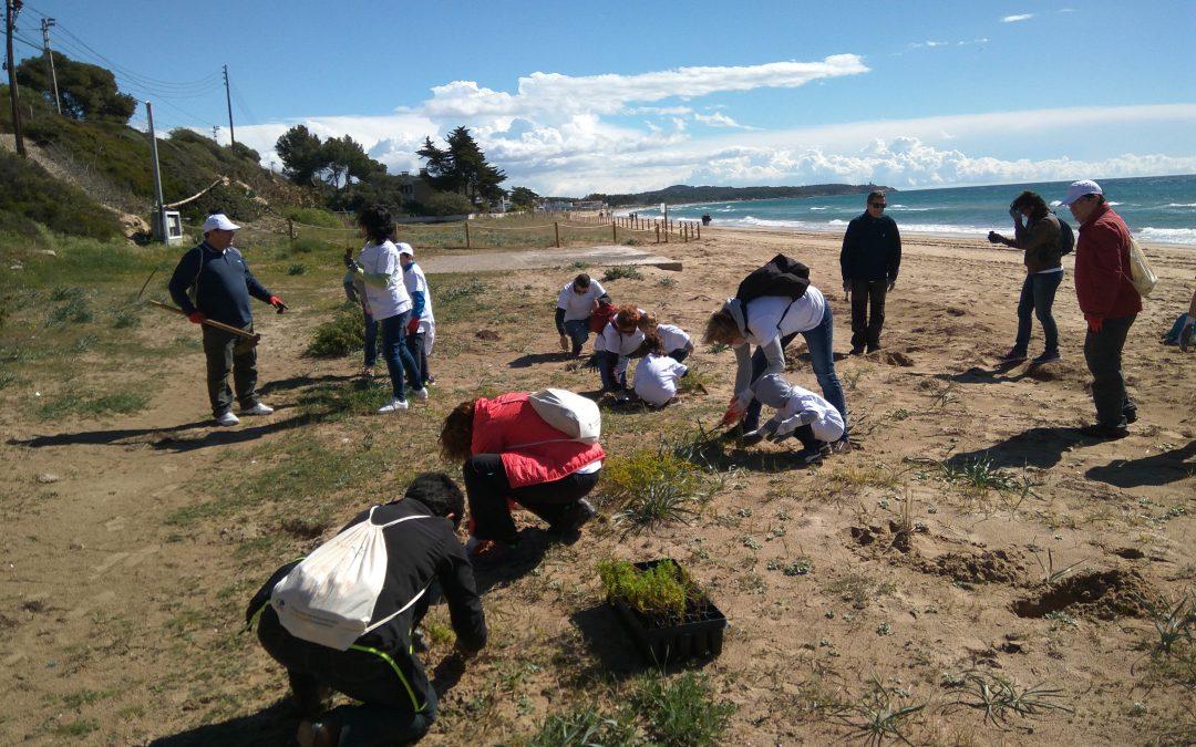 Voluntarios de Gas Natural Fenosa contribuyen a mejorar el entorno natural de Tarragona