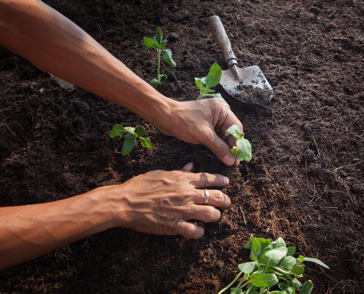 Taller sobre la Política Agraria Comunitaria en Valencia