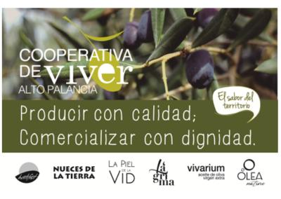 OLIVARES DE VIVER