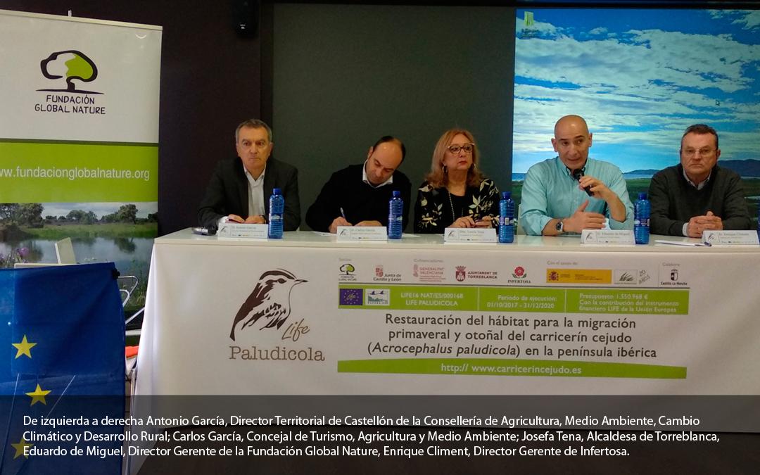 Conservar y recuperar los humedales de la península ibérica es fundamental para la conservación de las aves palustres