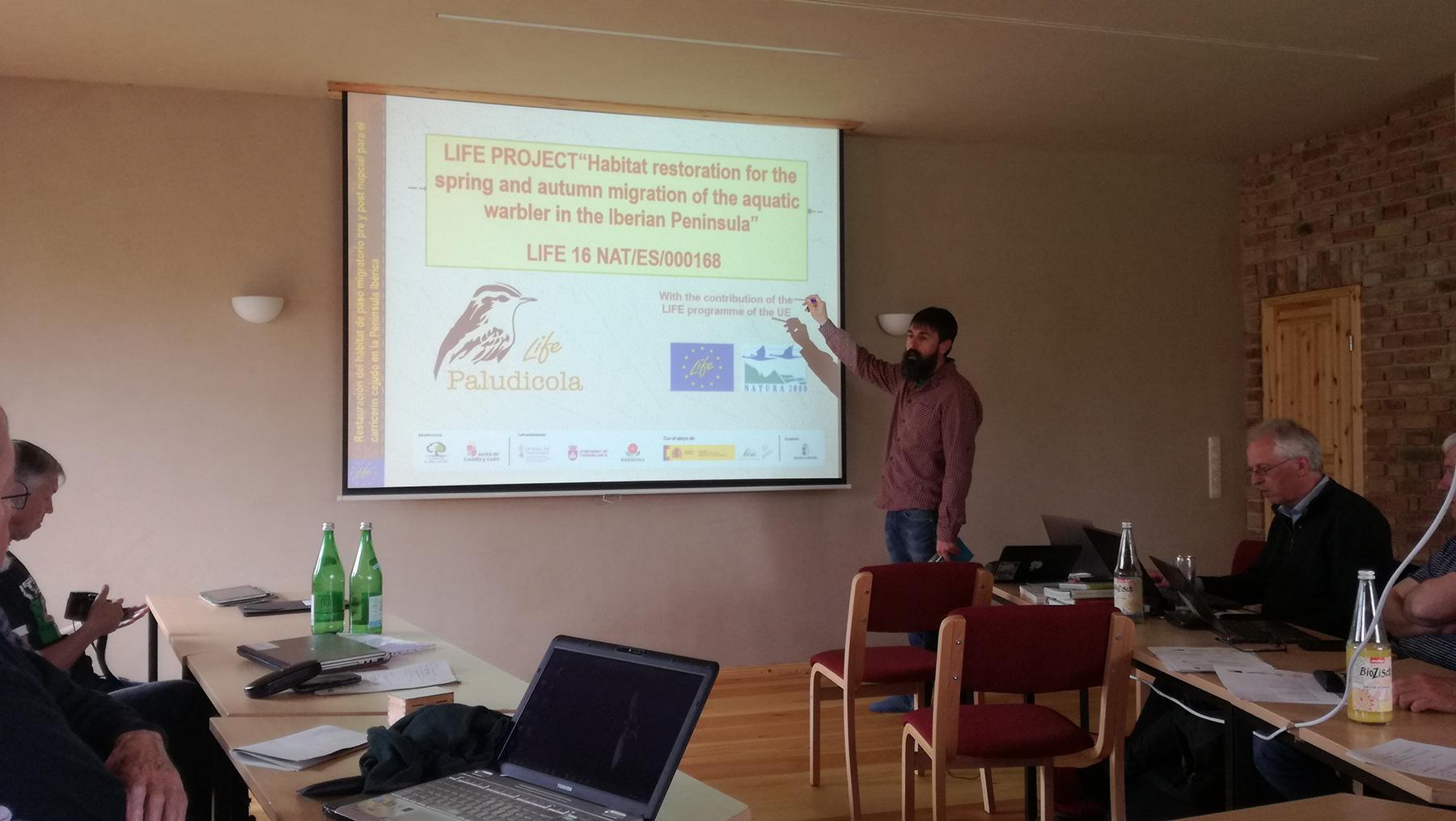 Participamos en la reunión del Aquatic Warbler Conservation Team (AWCT)