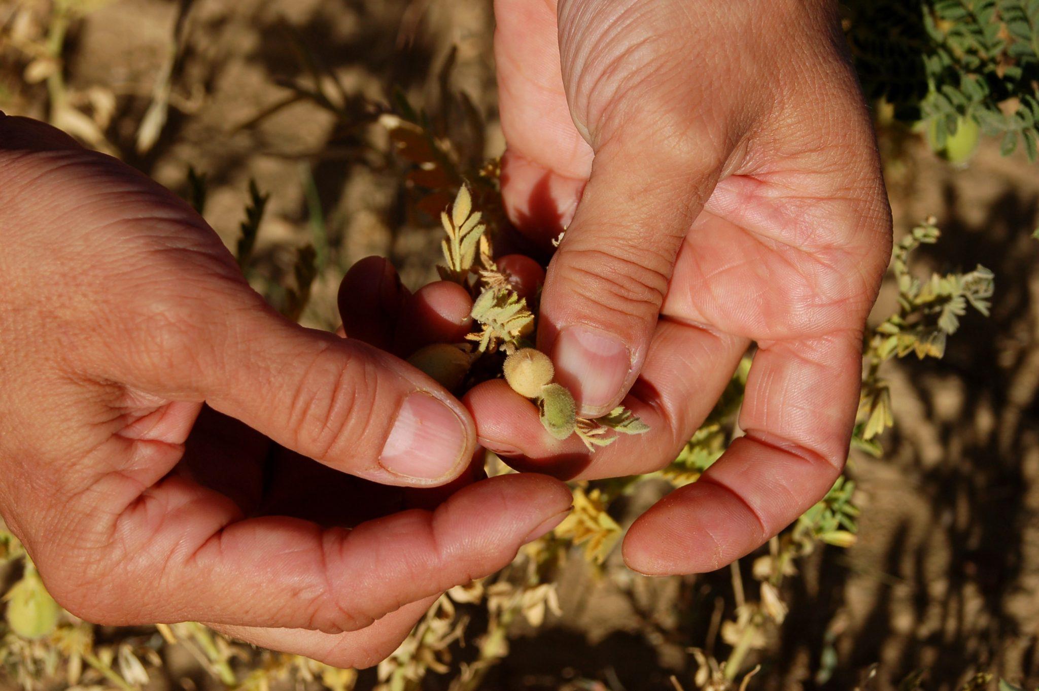 «Promoción de productos agrícolas sostenibles a través de Natura 2000» finalista de los premios Red Natura 2000