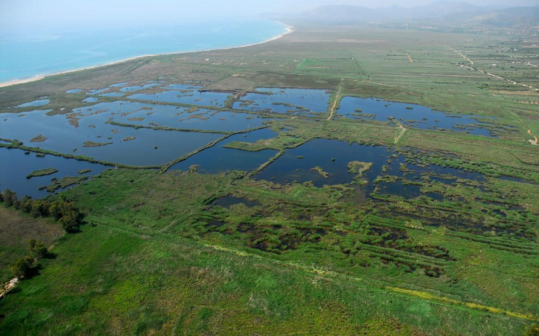 Fundación Global Nature, premio internacional Ramsar por su labor de conservación de lagos y zonas húmedas