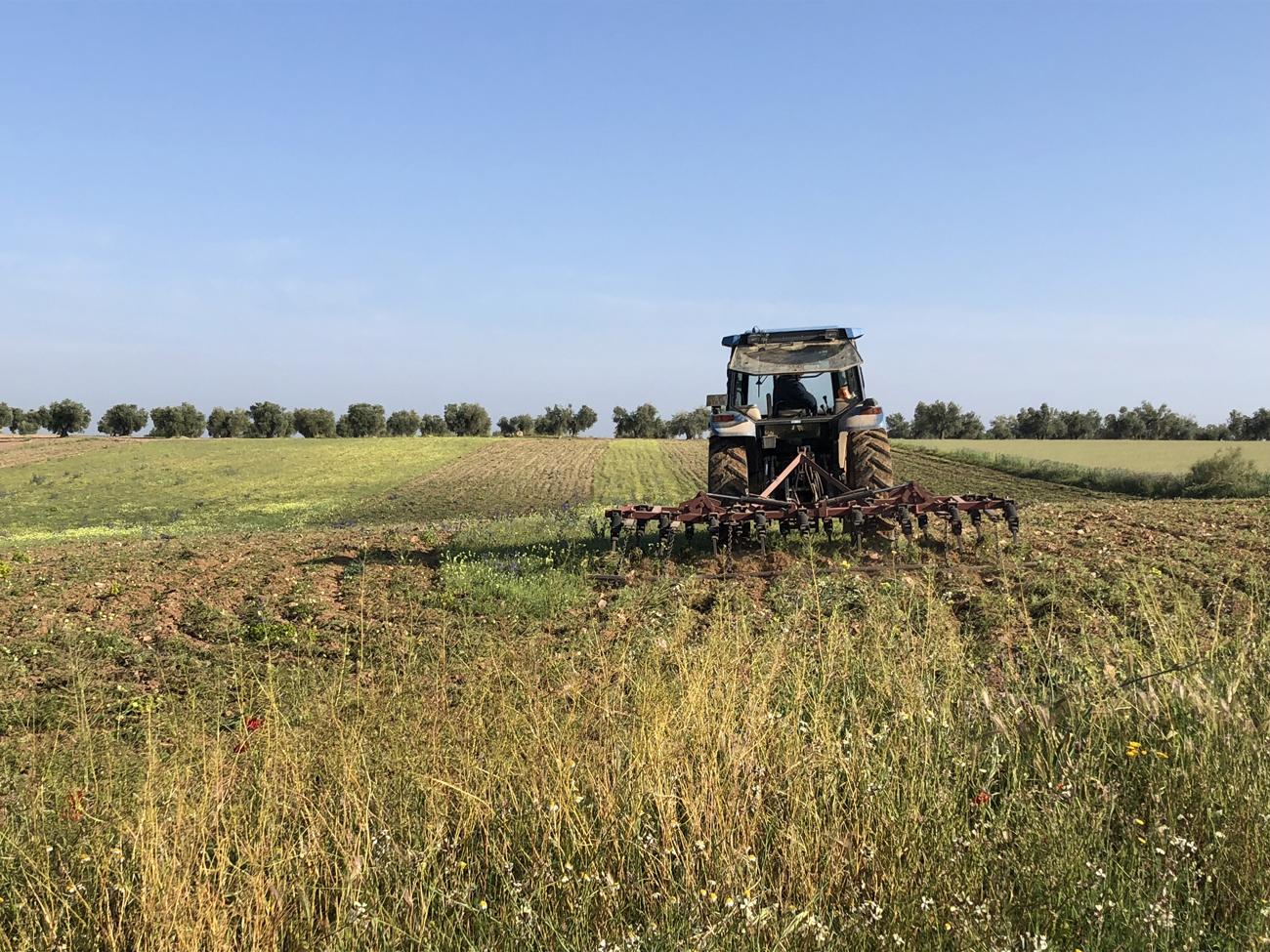 La conservación de la biodiversidad es esencial para la sostenibilidad del sector agroalimentario