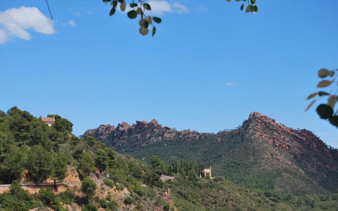 El proyecto 'Cortafuegos Verdes' recupera cultivos sosteniblesen el Parque Natural del Desert de Les Palmes, de Castellón
