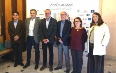 VinoDiversidad: Suelos vivos,clave para el viñedo ante el cambio climático