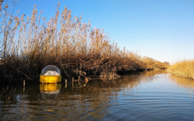 El Proyecto EcoSustain analiza la calidad del agua de la Albufera y se presenta ante la comunidad científica