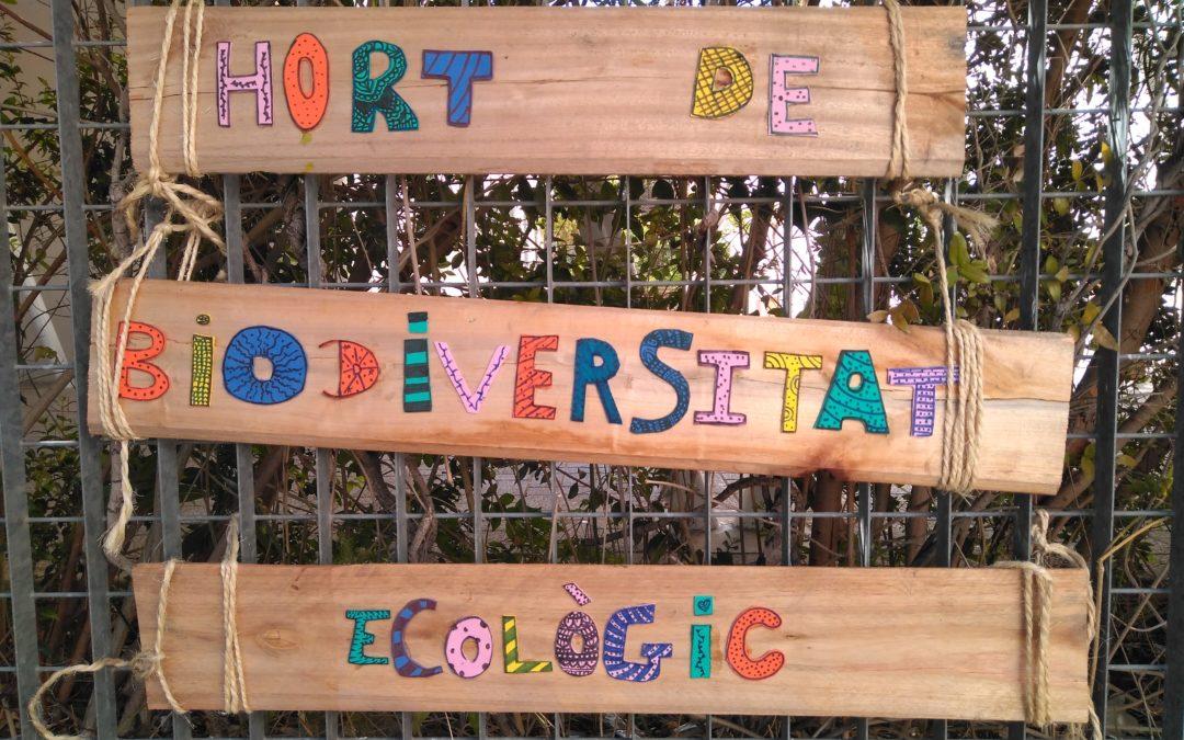 Los Huertos de Biodiversidad de FGN y Ecoembes siguen en los centros educativos de La Mancha y el Hierro y se amplían a la Comunidad Valenciana
