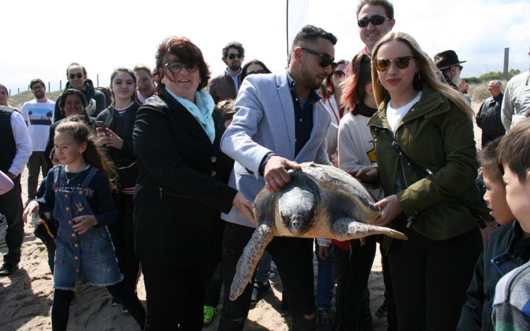 Aumentan a 126 los ejemplares de tortuga boba recuperados gracias a la intervención de pescadores profesionales