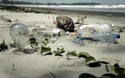 Apúntate al voluntariado ambiental para Leroy Merlín con motivo del World Cleanup Day