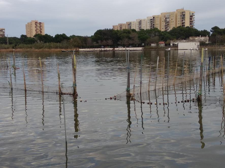 La red internacional Living Lakes declara l'Abufera Lago Amenazado 2020