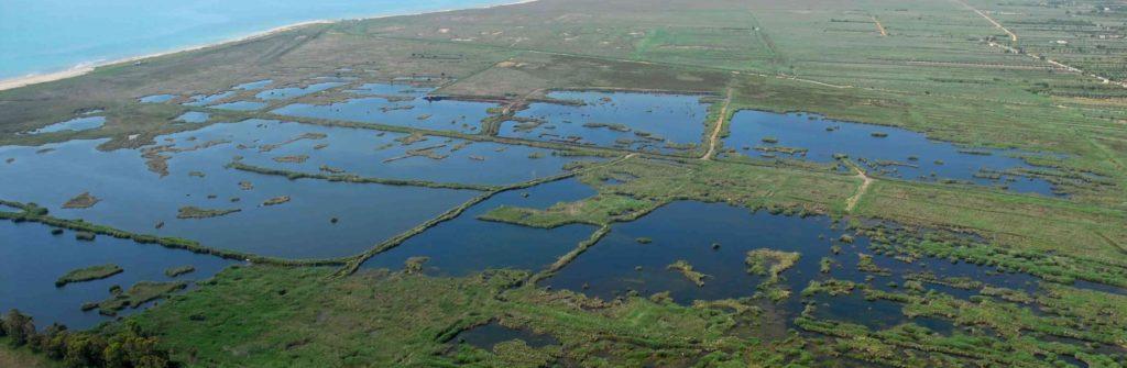 La importancia de no dejar atrás la salud de los ríos y los humedales