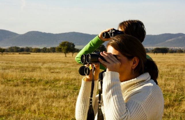Servicios turísticos vinculados a la conservación del patrimonio