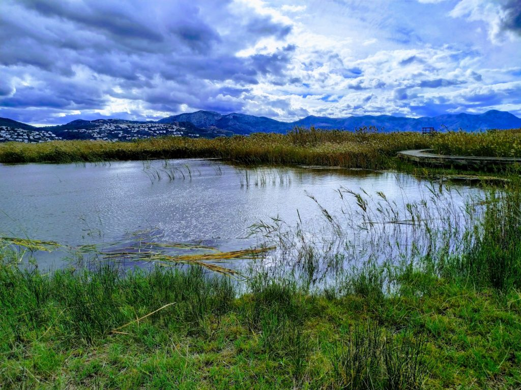 LIFE Wetlands4Climate