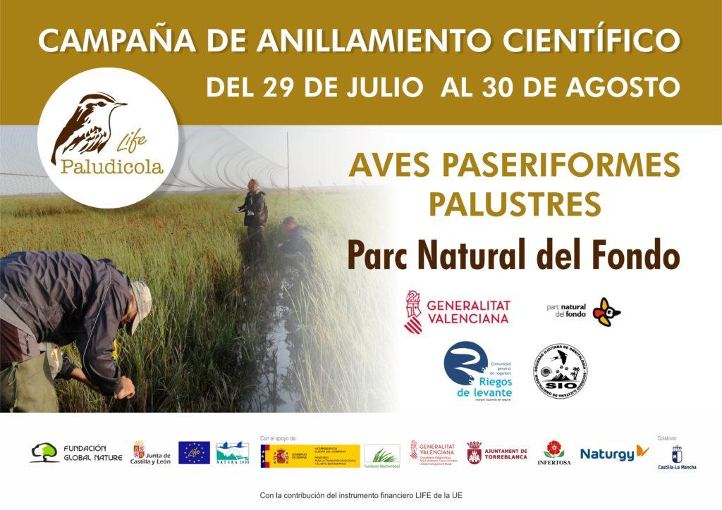 El proyecto LIFE Paludicola amplía sus zonas de monitoreo al Parque Natural El Hondo de Elche