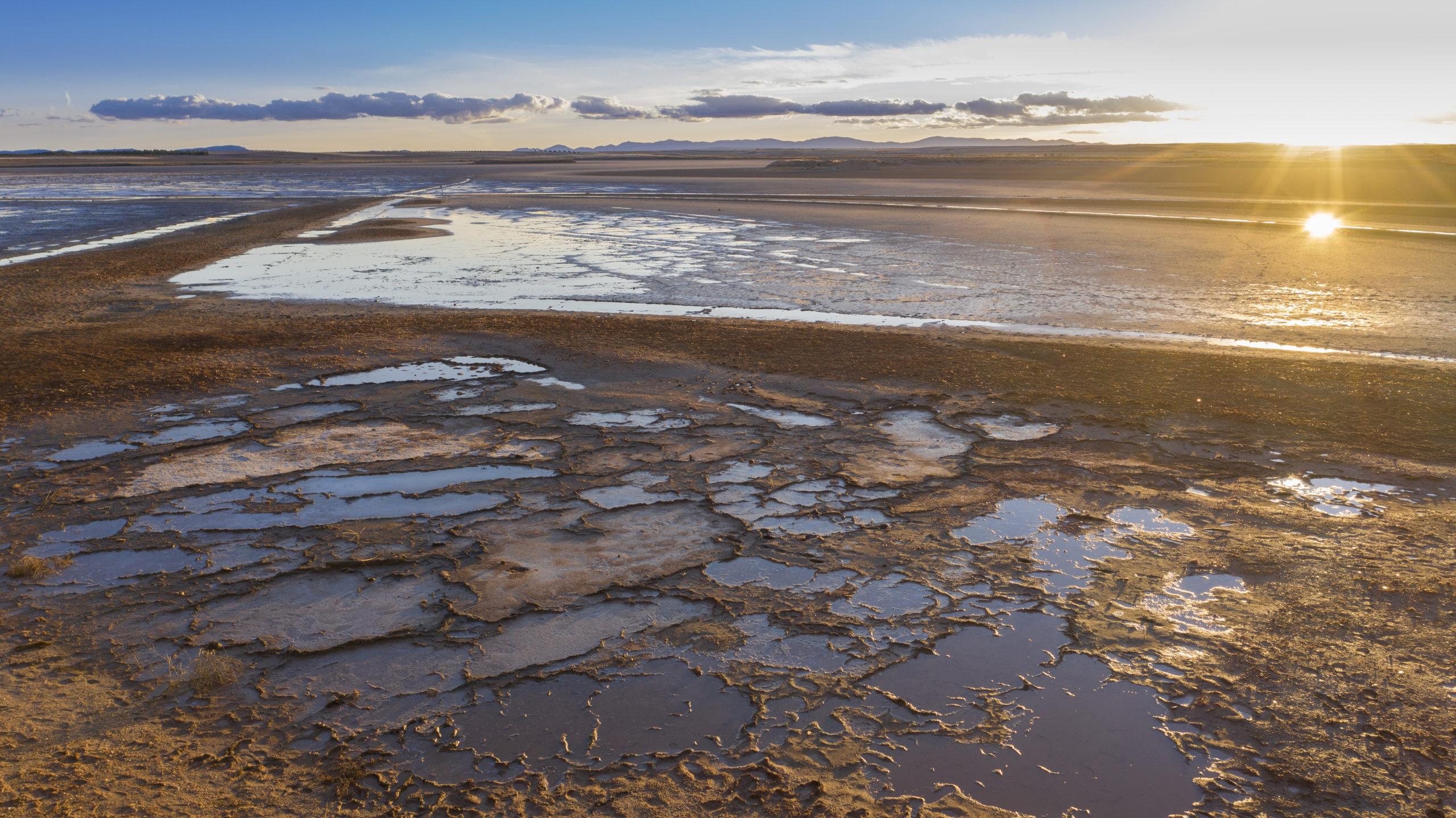 FGN consolida su trabajo internacional en conservación y restauración de humedales con una nueva alianza