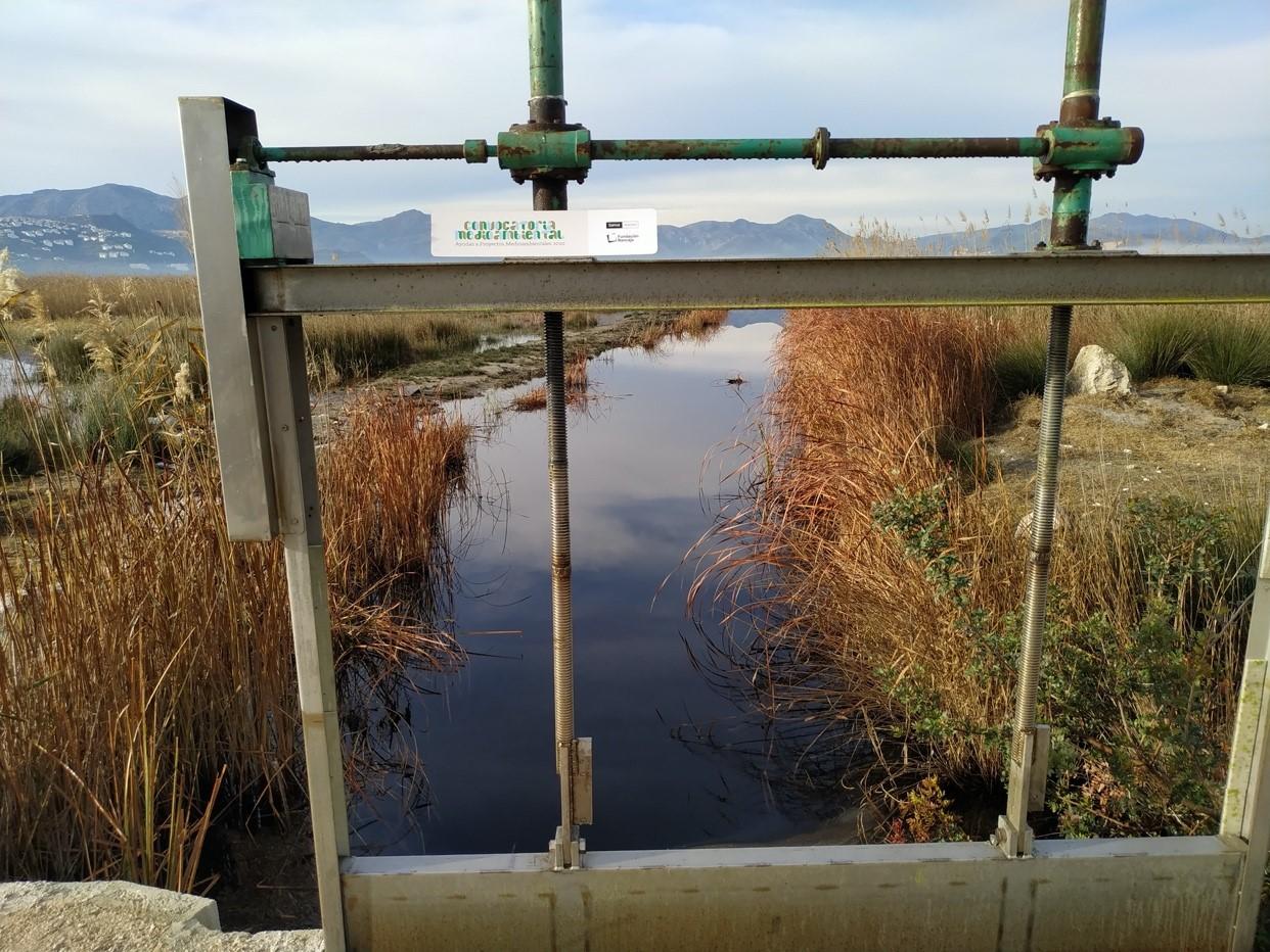 Concluyen las obras de reparación de canales y compuertas en marjales valencianos