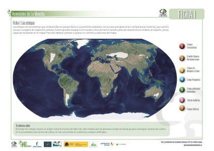 Fichas educación ambiental LIFE Humedales